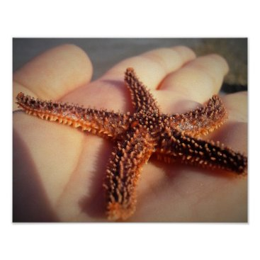 Beach Themed Starfish in Hand Poster