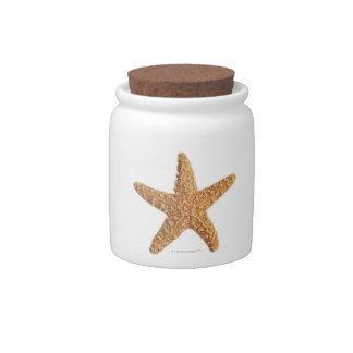 Starfish isolated on white candy jar