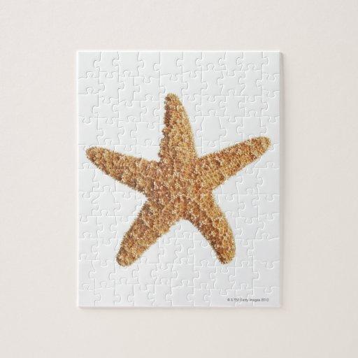 Starfish isolated on white jigsaw puzzle