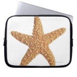 Starfish isolated on white laptop computer sleeves