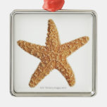 Starfish isolated on white square metal christmas ornament