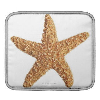 Starfish isolated on white sleeve for iPads