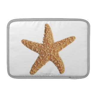 Starfish isolated on white sleeve for MacBook air