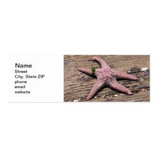 Starfish Mini Business Card
