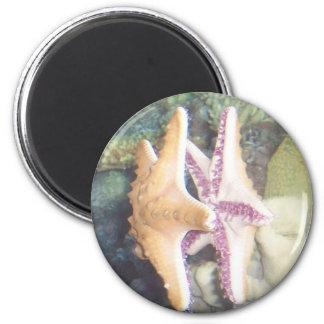 Starfish Mirror Image 2 Inch Round Magnet