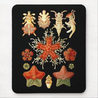 Starfish Mouse Pad