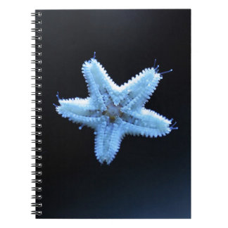 Starfish Notepad Notebook