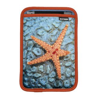 Starfish On A Coral With Polips iPad Mini Sleeve