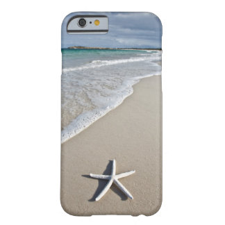 Starfish On A Remote Beach Barely There iPhone 6 Case