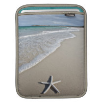 Starfish On A Remote Beach Sleeve For iPads