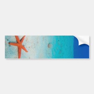 Starfish on a sand dune underwater car bumper sticker