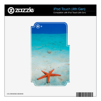 Starfish on a sand dune underwater iPod touch 4G skins