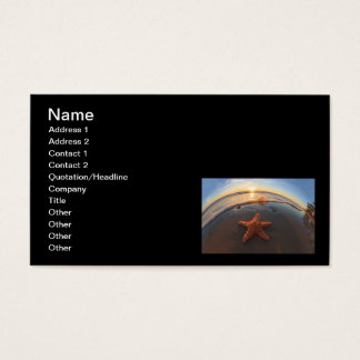 Starfish on Beach at Sunset Business Card