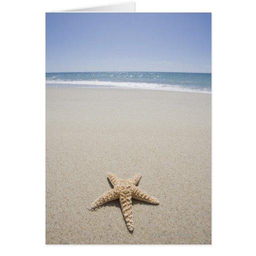 Starfish on beach by Atlantic Ocean Card