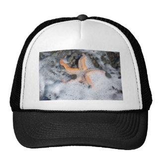 Starfish on Beach Trucker Hat