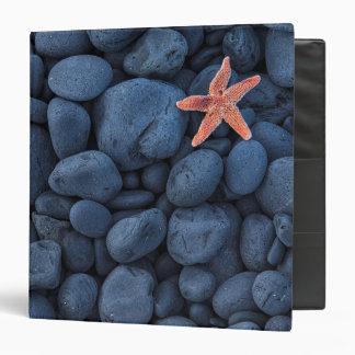 Starfish On Black Rocks Along The Coast   Iceland Binder