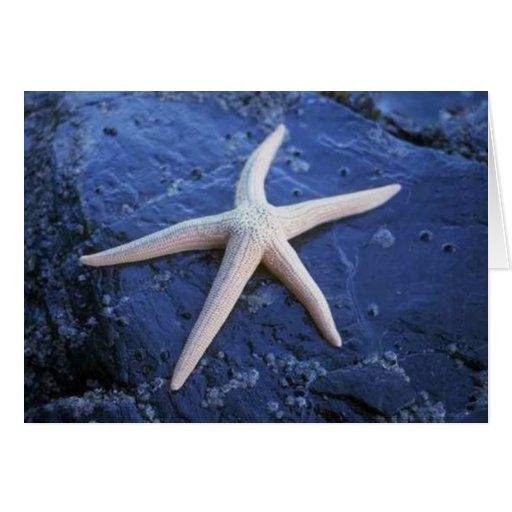 Starfish On Lava Rock Card