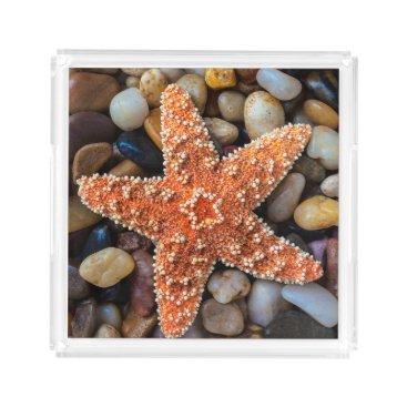 USA Themed Starfish On Rocks Acrylic Tray