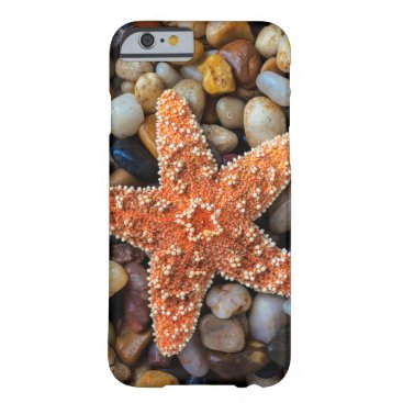 USA Themed Starfish On Rocks Barely There iPhone 6 Case