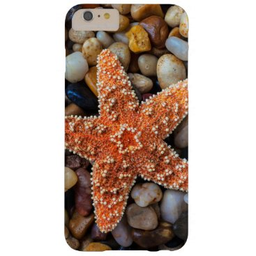 USA Themed Starfish On Rocks Barely There iPhone 6 Plus Case