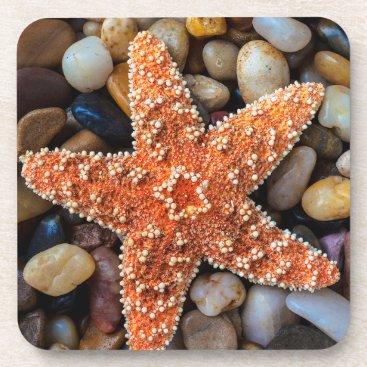 USA Themed Starfish On Rocks Beverage Coaster