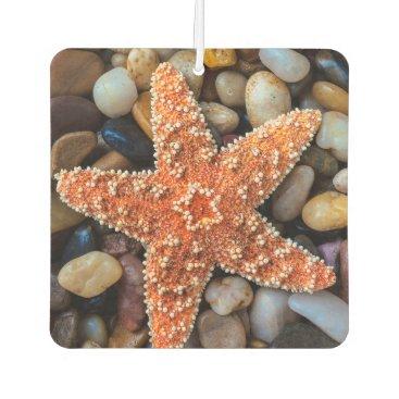 USA Themed Starfish On Rocks Car Air Freshener
