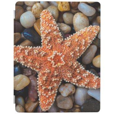 USA Themed Starfish On Rocks iPad Smart Cover