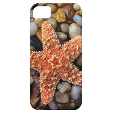 USA Themed Starfish On Rocks iPhone SE/5/5s Case