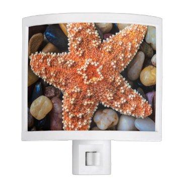 USA Themed Starfish On Rocks Night Light
