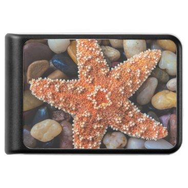 USA Themed Starfish On Rocks Power Bank