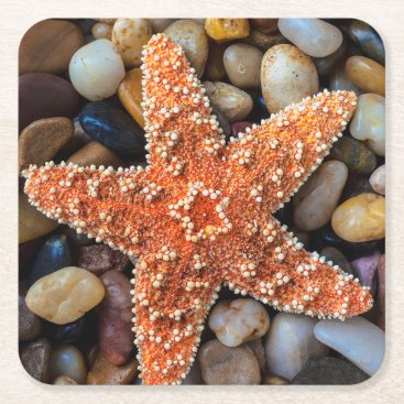 USA Themed Starfish On Rocks Square Paper Coaster