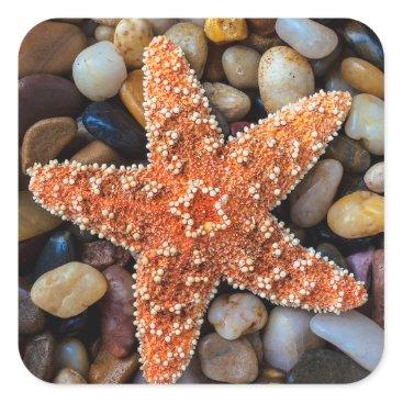 USA Themed Starfish On Rocks Square Sticker