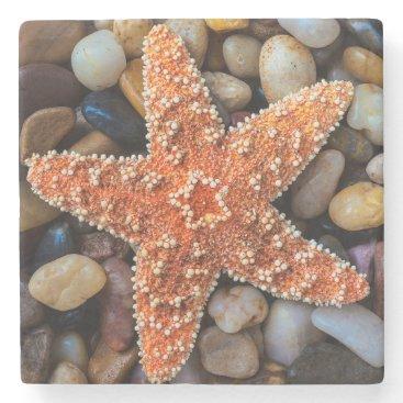 USA Themed Starfish On Rocks Stone Coaster