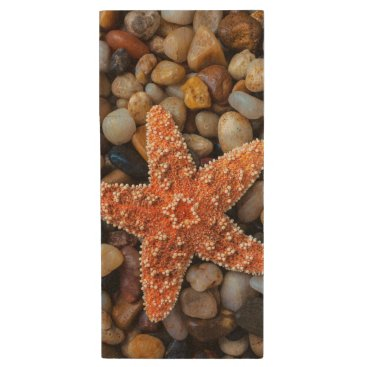 USA Themed Starfish On Rocks Wood USB Flash Drive