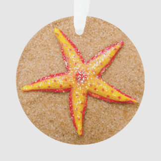 Starfish on Sand Ornament