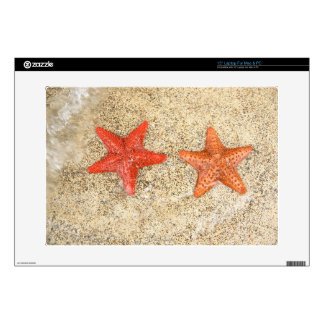 """starfish on the beach, at the edge of the ocean 15"""" laptop skin"""