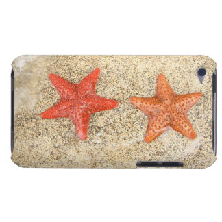 starfish on the beach, at the edge of the ocean iPod touch Case-Mate case