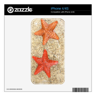 starfish on the beach, at the edge of the ocean skin for iPhone 4