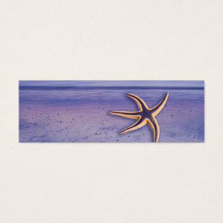 Starfish on the beach mini business card