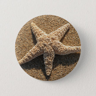 Starfish on the beach pinback button