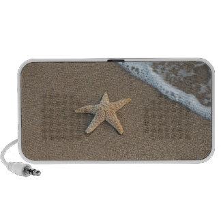 Starfish on the beach portable speakers