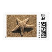 Starfish on the beach stamp