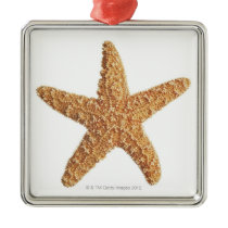 Starfish on White Metal Ornament