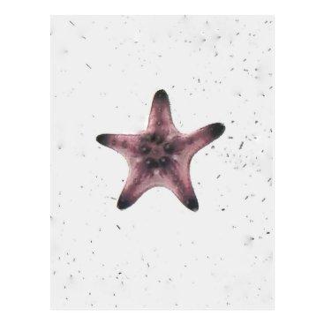 Beach Themed Starfish On White Sand Minimalism Pattern Postcard