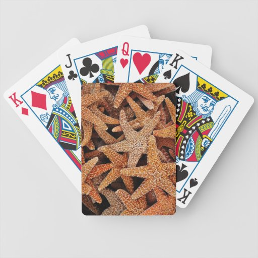 Starfish Photograph Bicycle Playing Cards