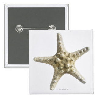 Starfish Pinback Button
