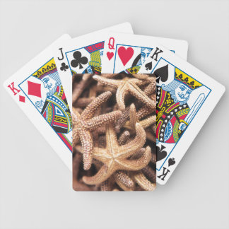 Starfish playing cards