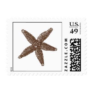 Starfish Postage Stamp