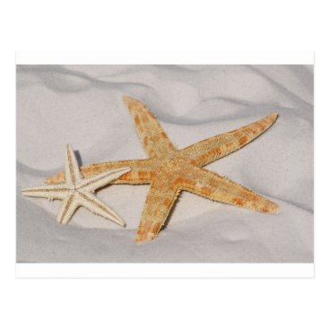 Beach Themed starfish postcard