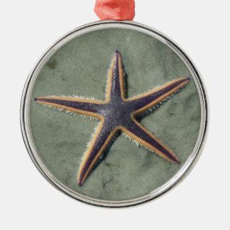 Starfish Purple sea star on beach Metal Ornament